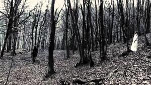 Fairytale video trailer